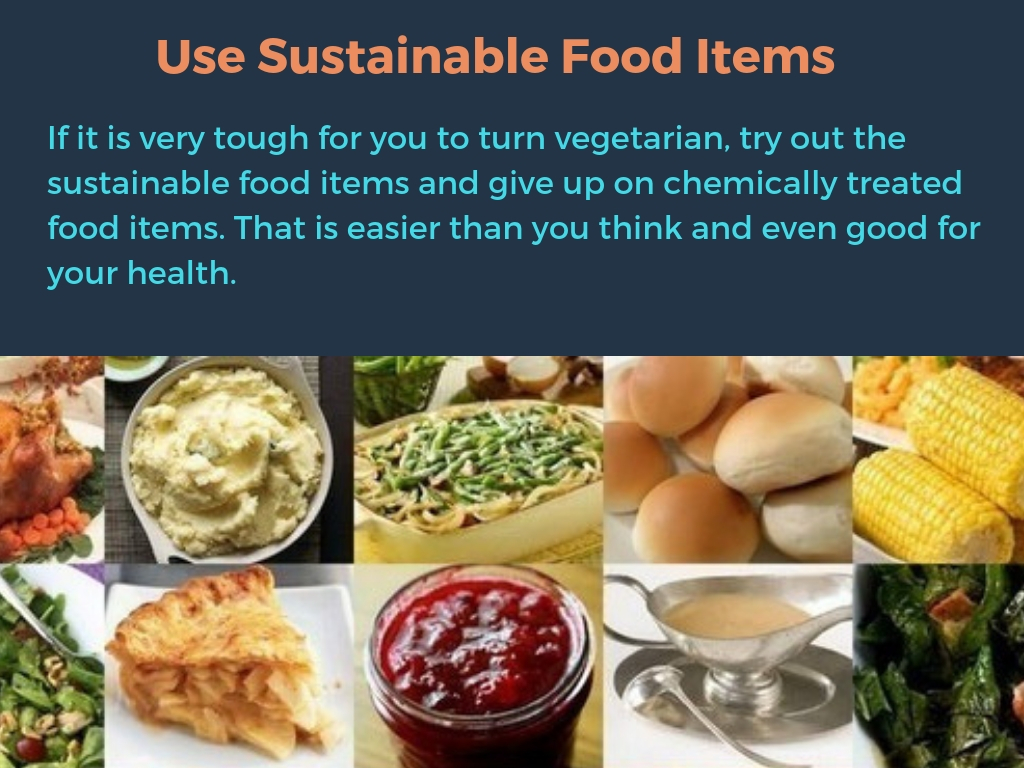 Use Sustainable Food Items